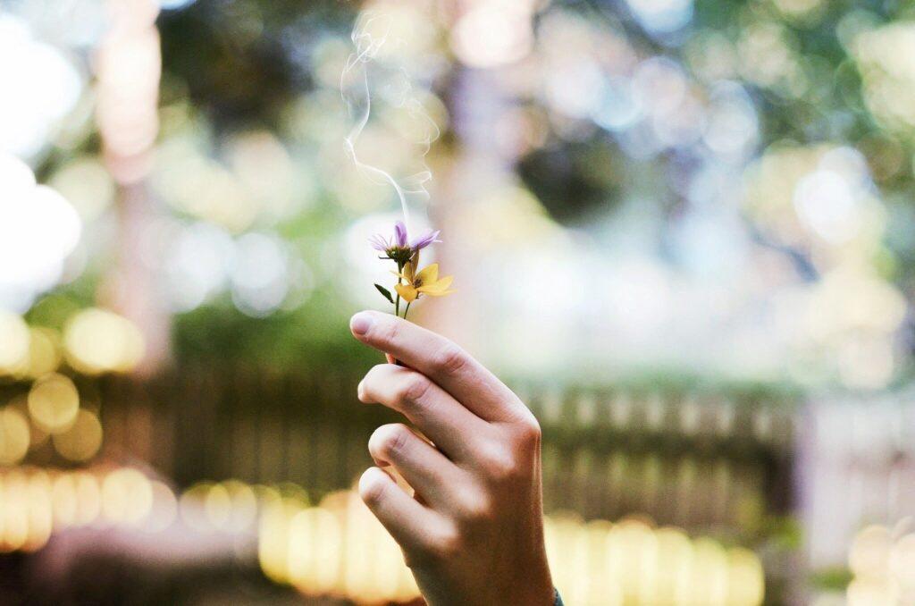 Der Duft der Liebe